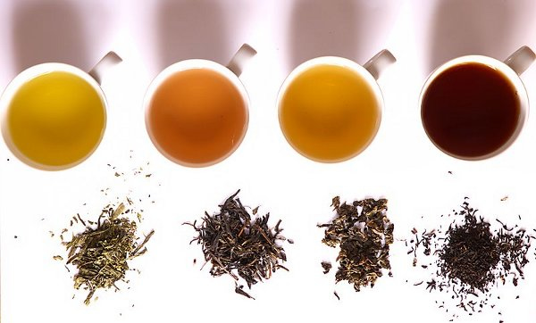 Love Wine and Tea? Scientists Discover Plant Part Whence Their Pucker Springs photo