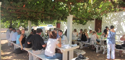 The 12-in-1 Wine From Durbanville Wine Valley photo