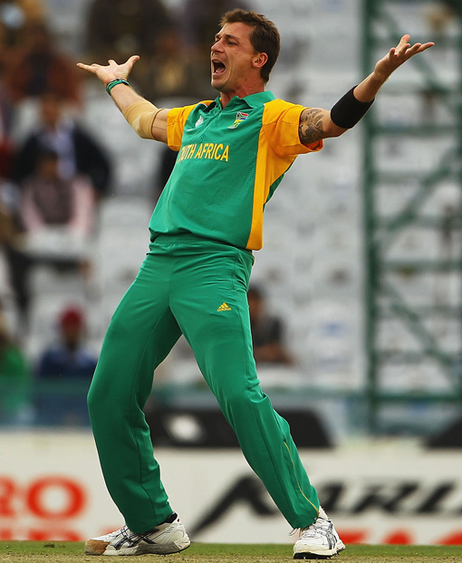 Wine and Pizza keep cricketer Dale Steyn pumped up photo