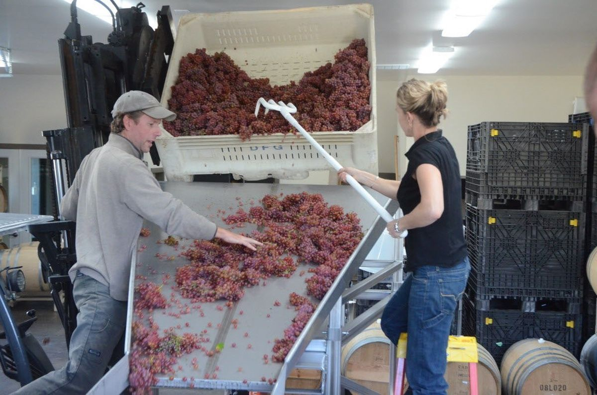 Analemma Wines Opens New Tasting Room Near Columbia Gorge Town Of Mosier photo