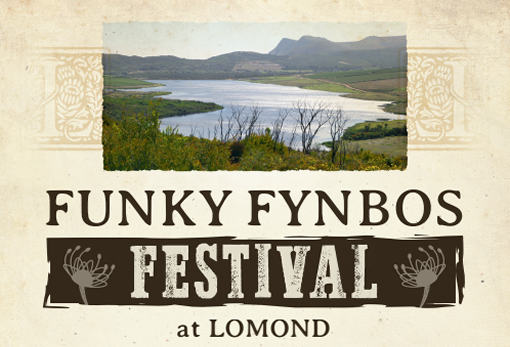 Funky Fynbos Festival at Lomond photo