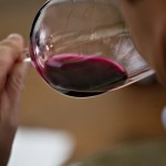 It`s official: Americans like red wine better than white wine photo