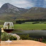 Creation Reserve Pinot Noir Triumphs with Platter 5 Stars photo