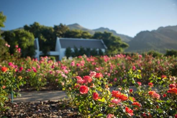 Win four weekend tickets to Franschhoek Open Gardens photo