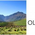 Oldenburg Vineyards Wins Maiden Five Star Platter Award photo