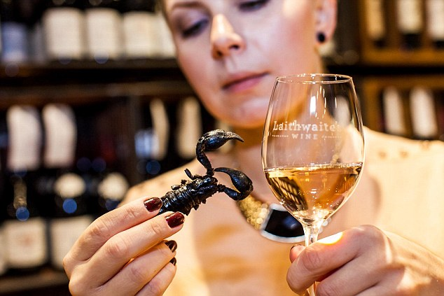 The world`s first insect and wine matching guide photo
