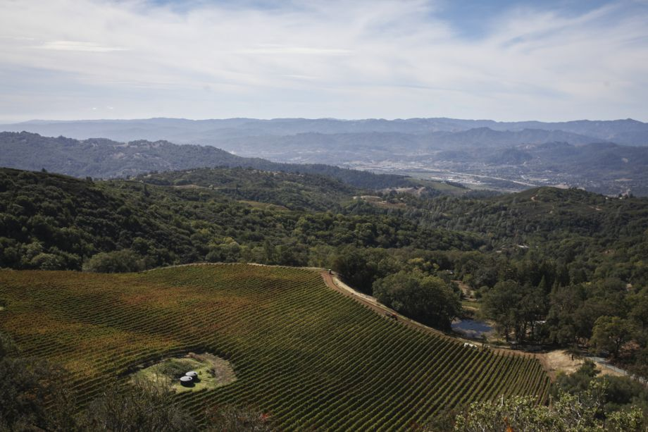 A Sonoma mountaintop aims for the heights with Cabernet photo