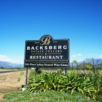 Spend Day of Goodwill at Backsberg photo