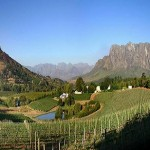 Jackson Family Wines buys South African Vineyard photo