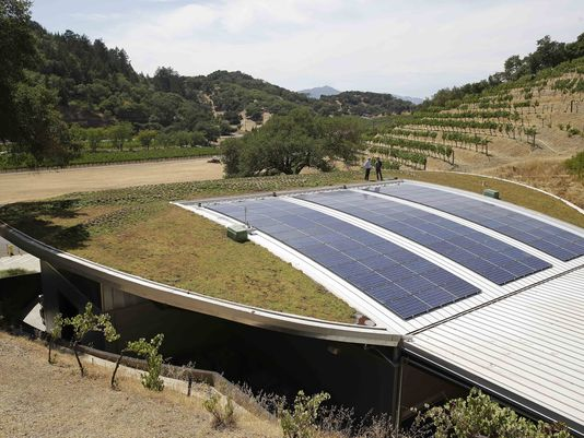 Living roofs take root in wine country photo
