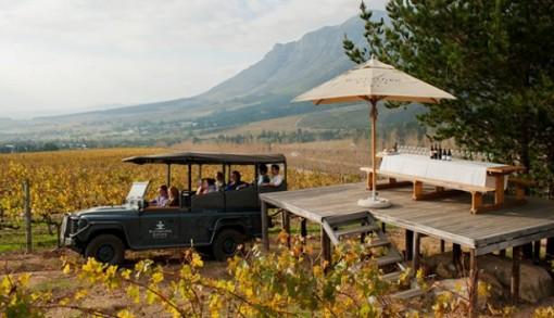 waterford safari e1417419066430 Waterford Estate wins global Wine Tourism Award