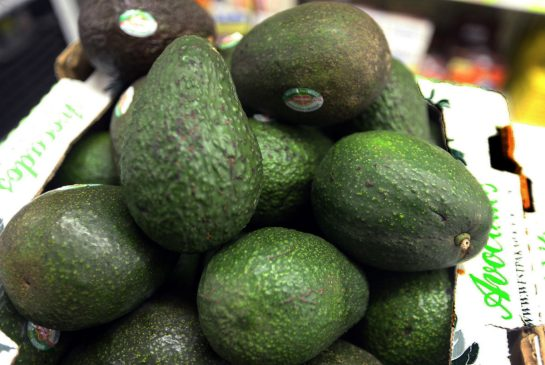 London based distillery to make spirits from Avocado photo