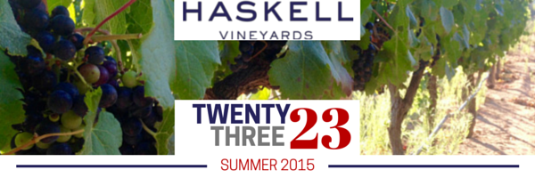 Haskell at the 2015 Cape Wine Auction photo