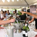 Experience the best of Stellenbosch during the 2015 Stellenbosch Wine Festival photo