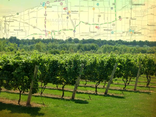 Niagara Wine Trail grows to 22 wineries photo