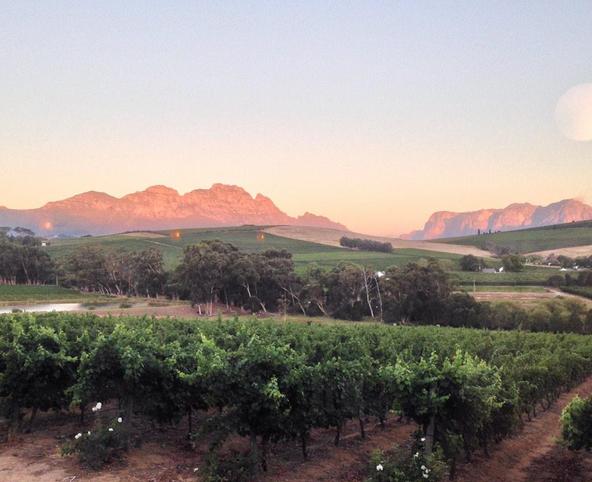Celebrating 30 Years of Winemaking, Dedication and Innovation photo