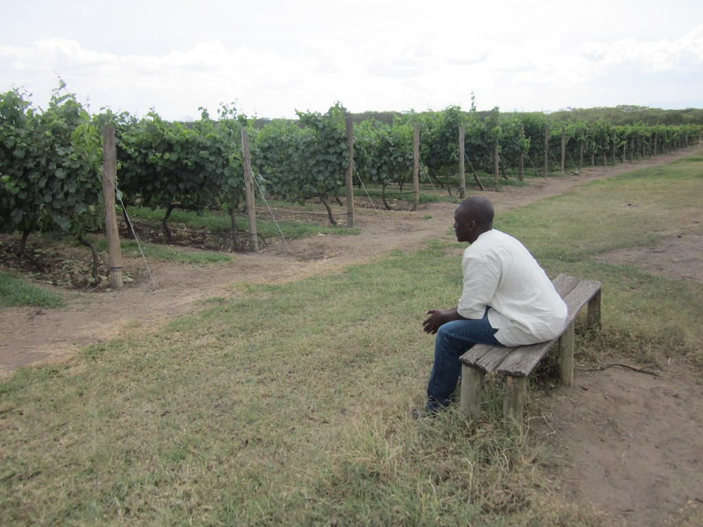 A Visit to the Makers of Leleshwa Wines photo