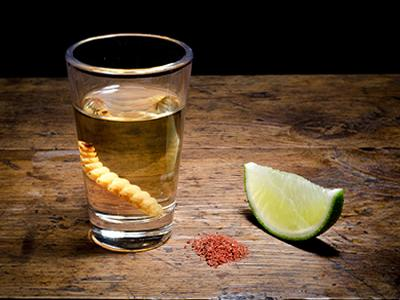 A Beginner`s Guide to Mezcal, Tequila`s Divine Cousin photo