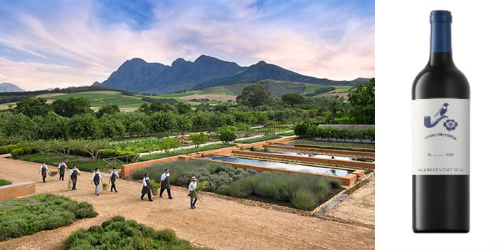 Babylonstoren adds a King to its growing wine portfolio photo