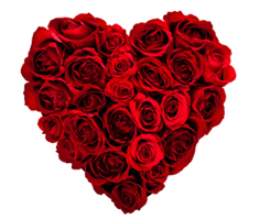 rose heart Harvest News from Lanzerac Estate