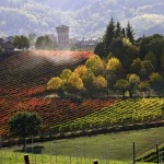 Top 10 Best Wine Routes in the World photo
