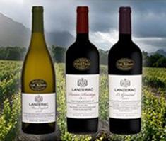 wine exort Harvest News from Lanzerac Estate