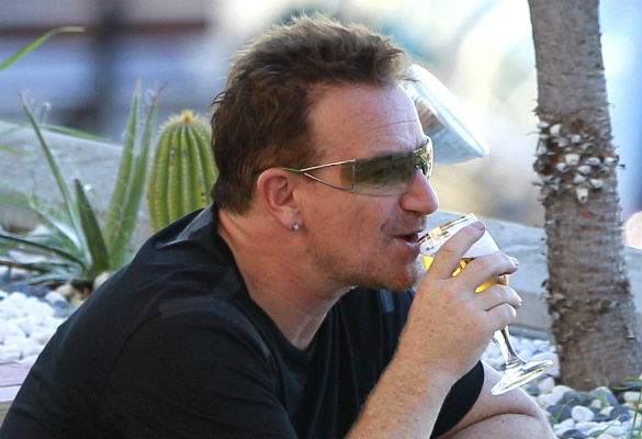 Noel Gallagher claims that Bono can drink more than Morrissey photo