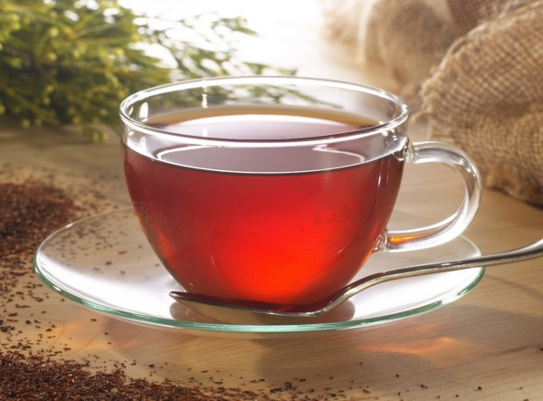 Rooibos and honeybush teas could fight cancer photo