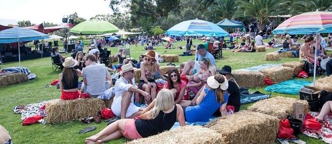Diemersfontein Hosts Pinotage On Tap Festivals photo