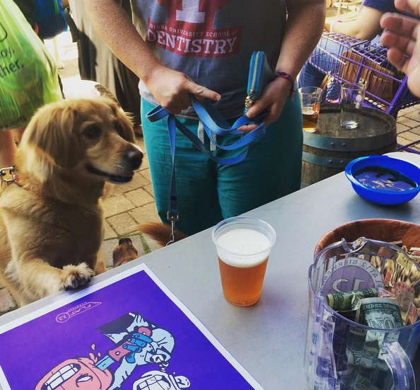 Beer For Dogs' Is Real photo