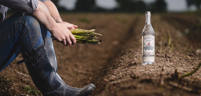 First-ever London dry gin made with asparagus hits the market this October photo