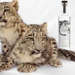 Want to save an endangered cat? Drink this vodka photo