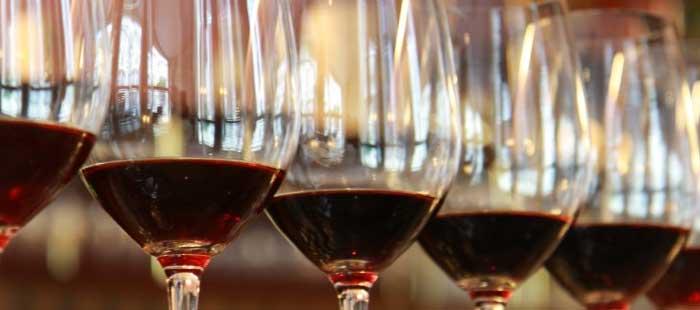 Einführung in die Weinprobe photo