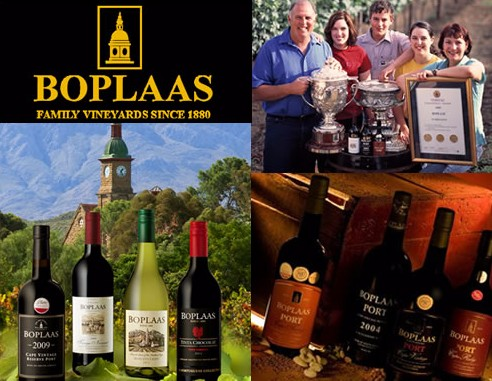 Boplaas wines on a wave of success photo