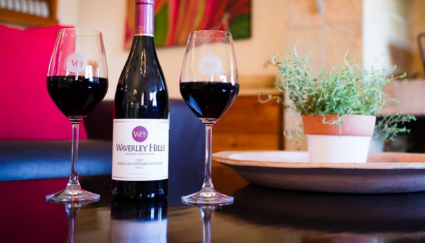 Another GOLD for Waverley Hills SMV 2011 at Veritas Awards photo