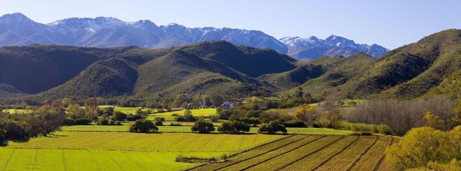 Exploring the diversity of the Klein Karoo Wine Route photo