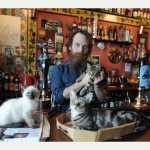 City centre pub serves the purr-fect pint thanks to its 15 resident cats photo