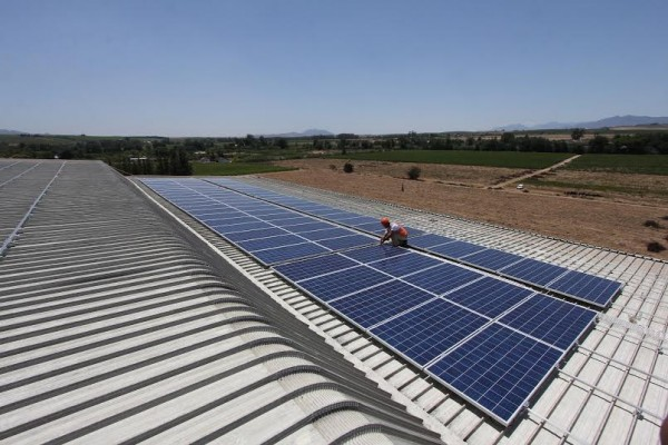DGB gets largest solar power plant in South African wine industry photo