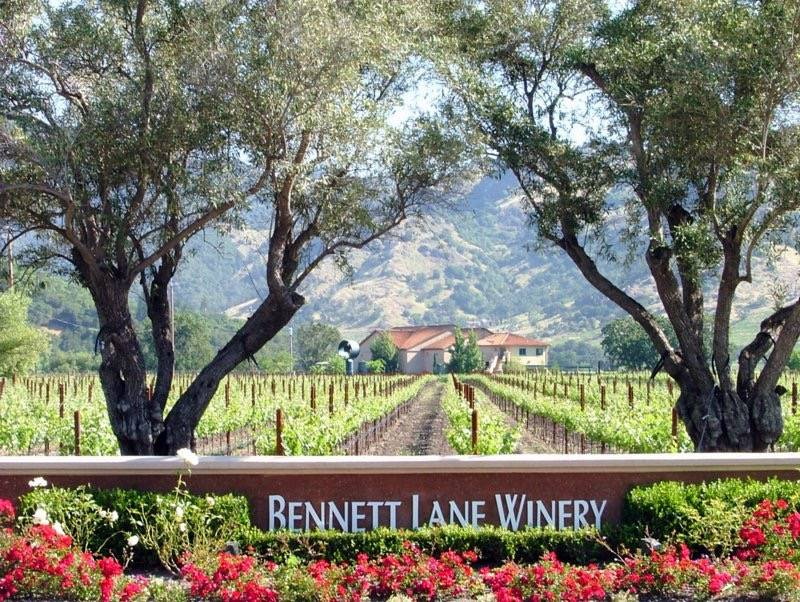 7 Reasons You Should Drive To Bennett Lane Winery In Calistoga Now photo