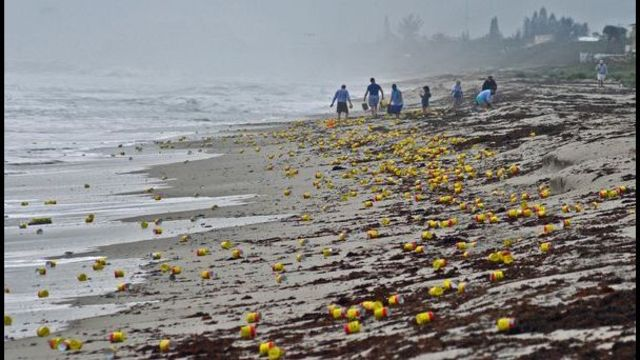 Coffee, ramen noodles and wine wash up on Florida beaches photo