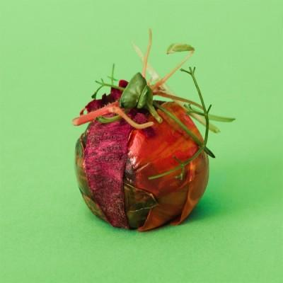 Ikea's Lab-Grown 3D Printed Meatballs photo