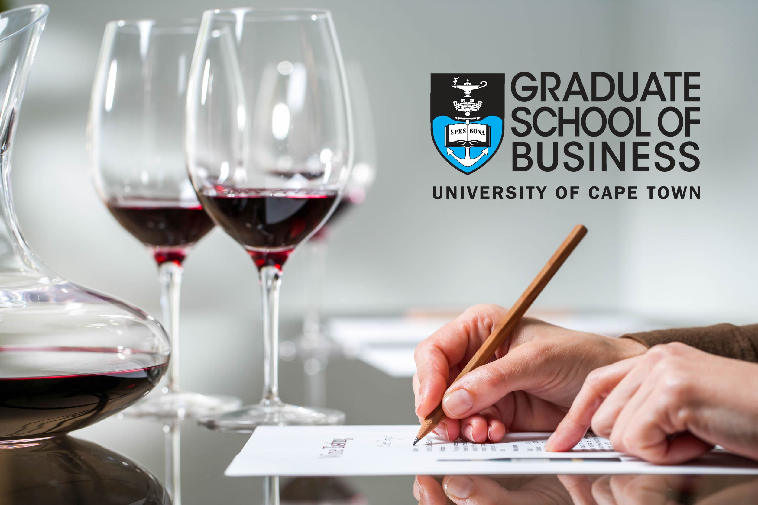 Wine Business Management Course Set To Boost South African Wine Industry photo