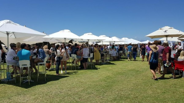The Durbanville Wine Valley gets its groove back photo