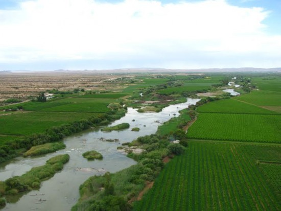 orange rivier vineyards e1456811726102 Two Top 100 SA Wine Spots for Orange River Cellars