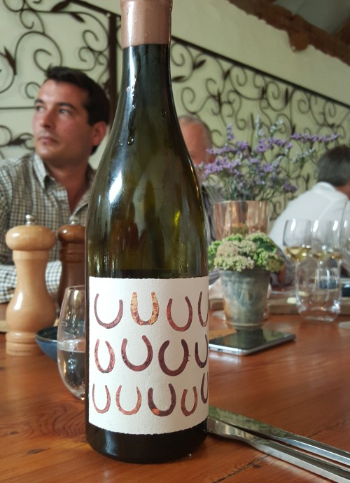Diemersdal adds a Skin-Fermented Sauvignon Blanc to its growing collection photo