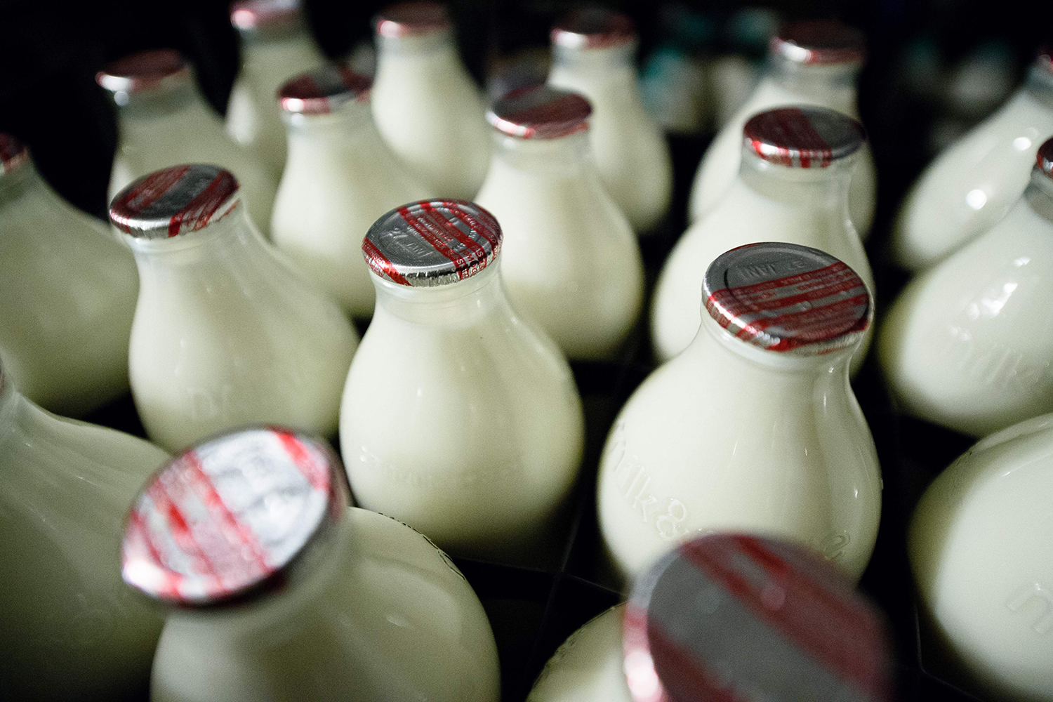 Why you should drink full-fat milk photo