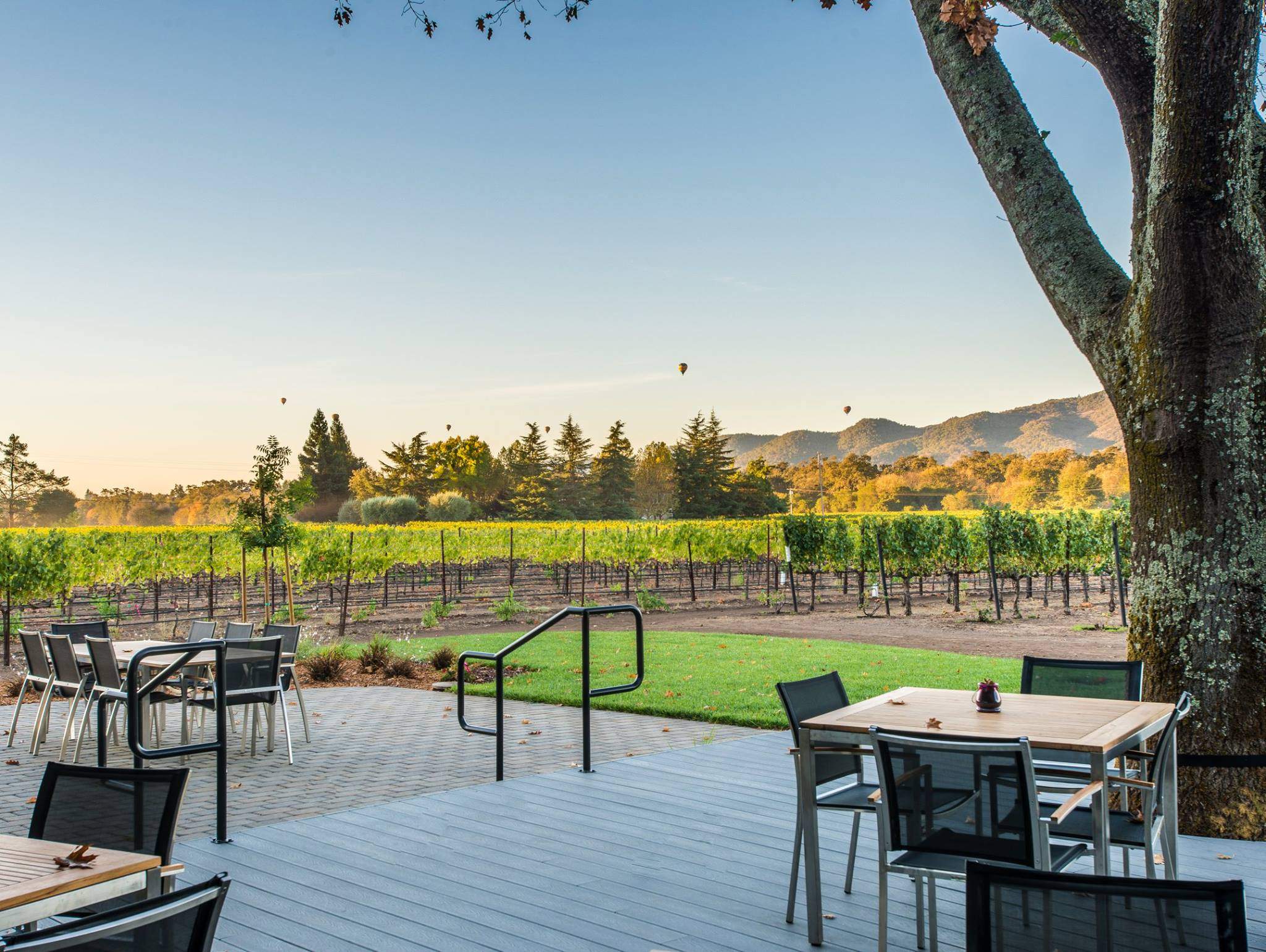 Wine Of The Week: The Wines Of Goosecross Vineyards photo