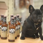 Brewery creates Bottom Sniffer craft beer for dogs photo