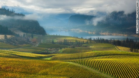 Worlds Best Wine Routes photo
