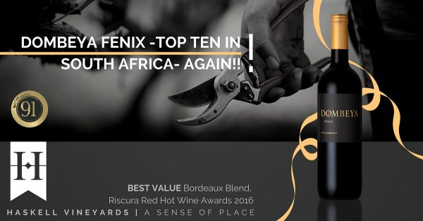 Dombeya Fenix 2011 shines at the Top 10 Bordeaux Blends Awards photo